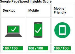 pagespeed nr1onlinesites