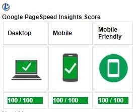 De testresultaten van Onze Website OnlineLive met PageSpeed Insight Google
